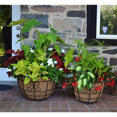 and landscape photo garden design planters patio new york large with modern