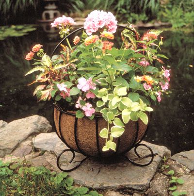 Cauldron Planters