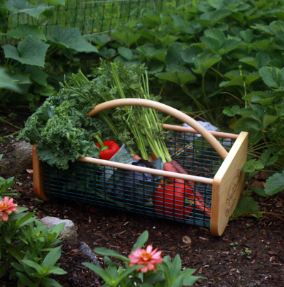 Trugs and Baskets
