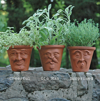 Herb Pots Pots With Faces English Terracotta Pots