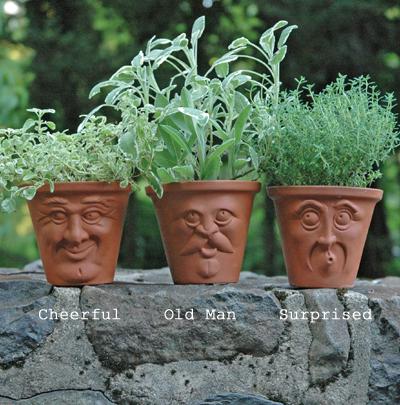 Herb Pots Pots With Faces English Terracotta Pots Kinsman Company