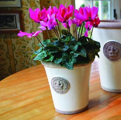 Buy kew gardens pottery kinsman garden kew pots workwithnaturefo