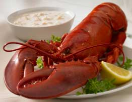 Lobster and Clam Chowder