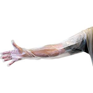 Shoulder Length Poly Gloves - 6 Pair