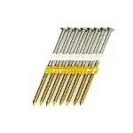 Full Round Head Plastic Strip Nails - 20-22°  - Type 316 Stainless Steel * Salt Water Safe *