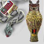 Scarecrows & Owls