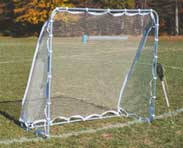 Goal Nets and Frames