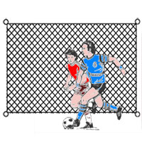 Soccer Backstop, Weather Treated
