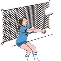 Volleyball Backstop/Barrier Net