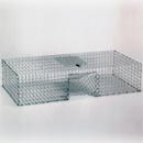 Quail and Pigeon Trap by Kness