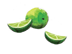 Spring Drinks: Citrus Mint Mojito