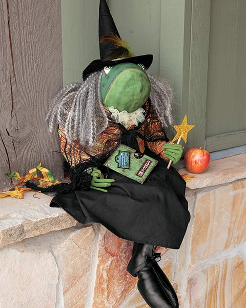 Fanny Frog Witch