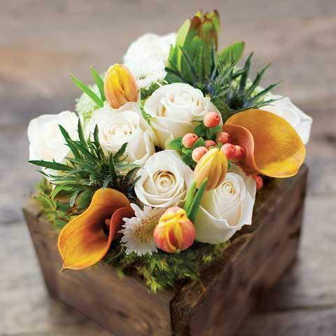Fiore Bianco