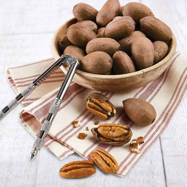 """Pecans In The Shell """"Desirables"""""""
