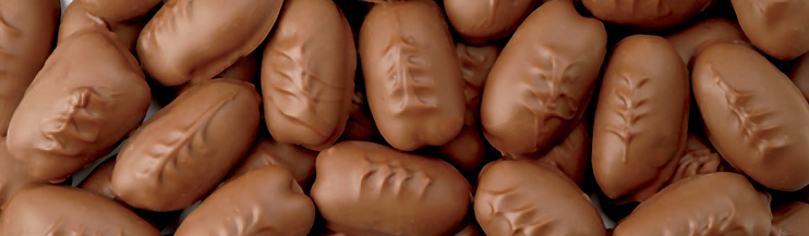 Chocolate Covered Pecans