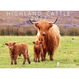 Highland Cow 2022 Calendar