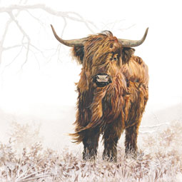 Highland Cow Napkins - pack of 20