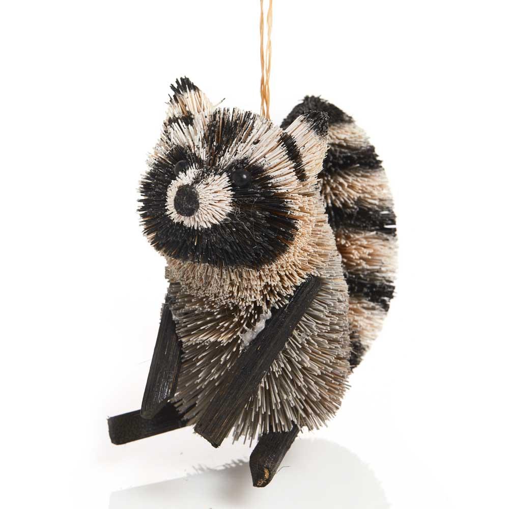 Curious Raccoon Buri Ornament