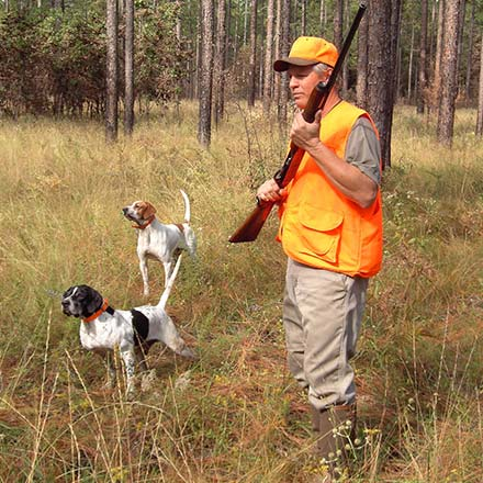 Hunting and Firearms