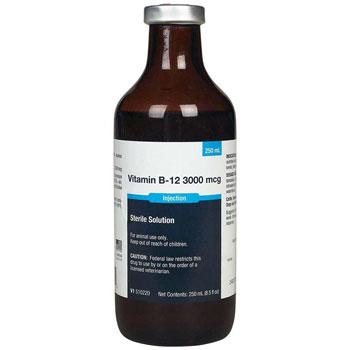 RXV VITAMIN B12 INJ. 1000MCG, 250ML VET LABEL