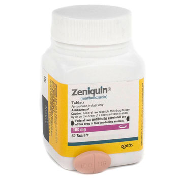 RXV, ZOETIS, ZENIQUIN 100MG,50 TABLETS