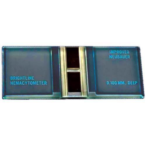 Labscope, neubauer hemacytometer
