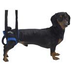 Jorvet Walkabout Animal Harness, X-Large
