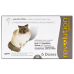 RXV, ZOETIS, REVOLUTION FOR CATS 15.1-22LBS, 6/PK