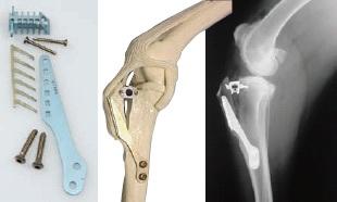 Kit, knee cruciate repair kit, 2.7mm coritcal self tapping 6mm 2.0mm