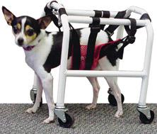 Cart, evan's mobility, medium