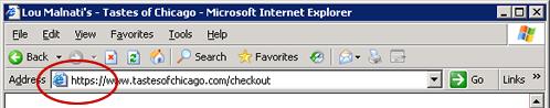 Secure address bar on Internet Explorer browser