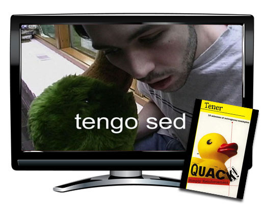 Quack!™ Tener + Spanish Video