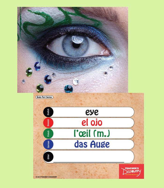 Bingo & Flash Cards Set of 12 Topics