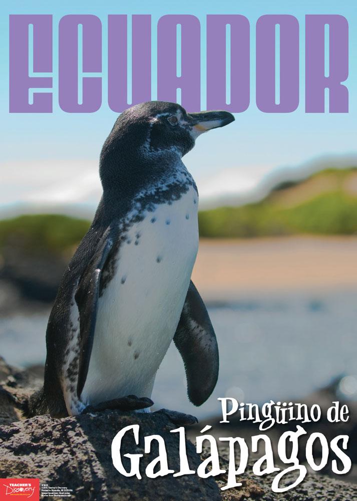 Ecuador Spanish Travel Poster