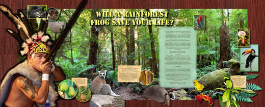 Rainforest Traveling Exhibit