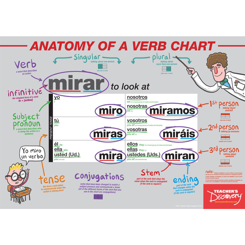 Anatomy of a Verb Chart Spanish Poster