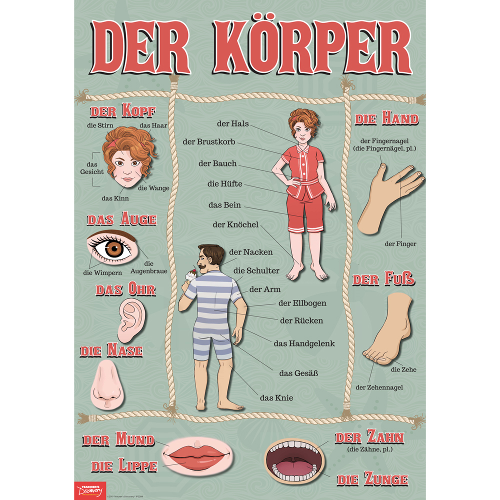 Body Parts German Poster