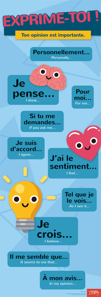 Expressing Opinions French Skinny Poster