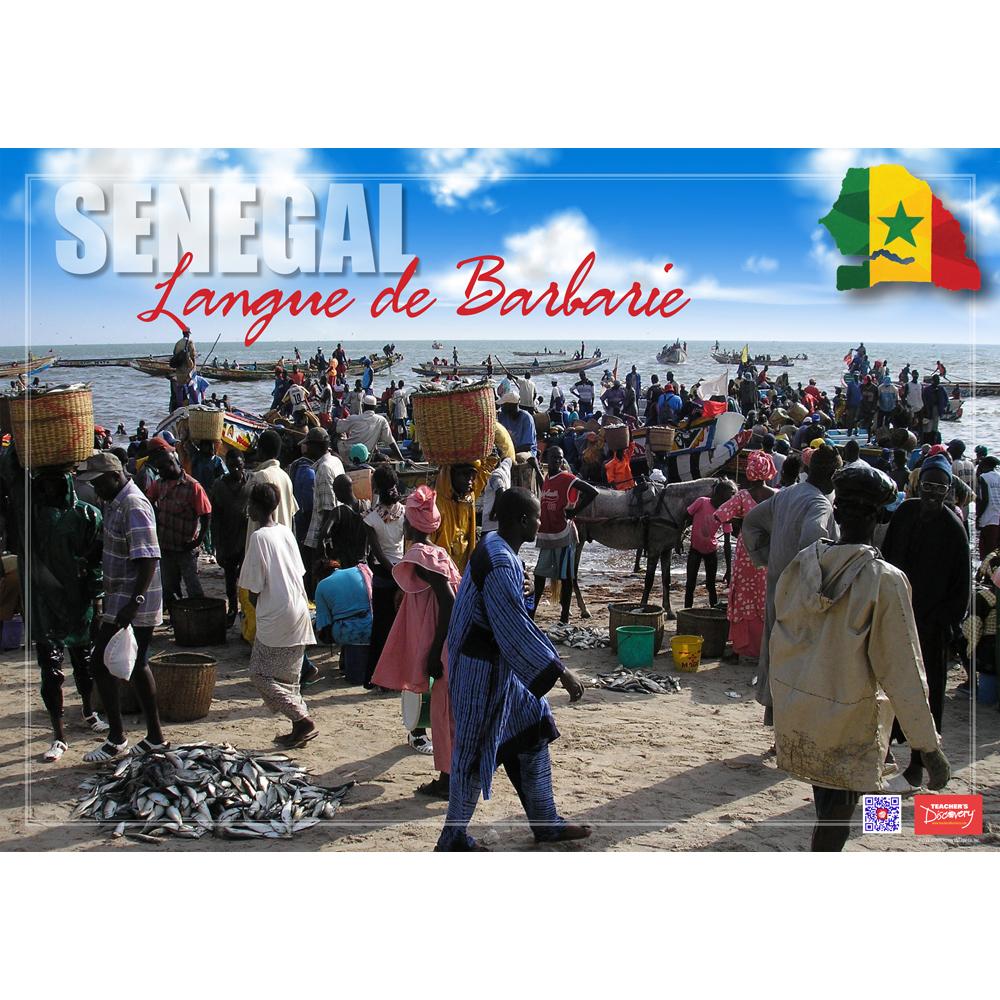 Senegal Langue de Barbarie Enhanced® French Travel Poster