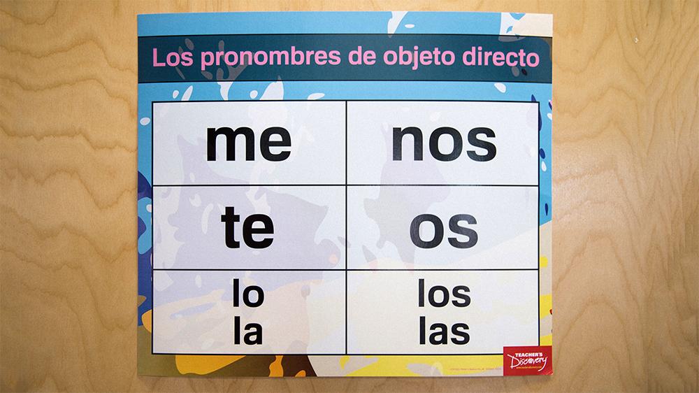 Pronouns Pro Spanish Charts (Set of 4)