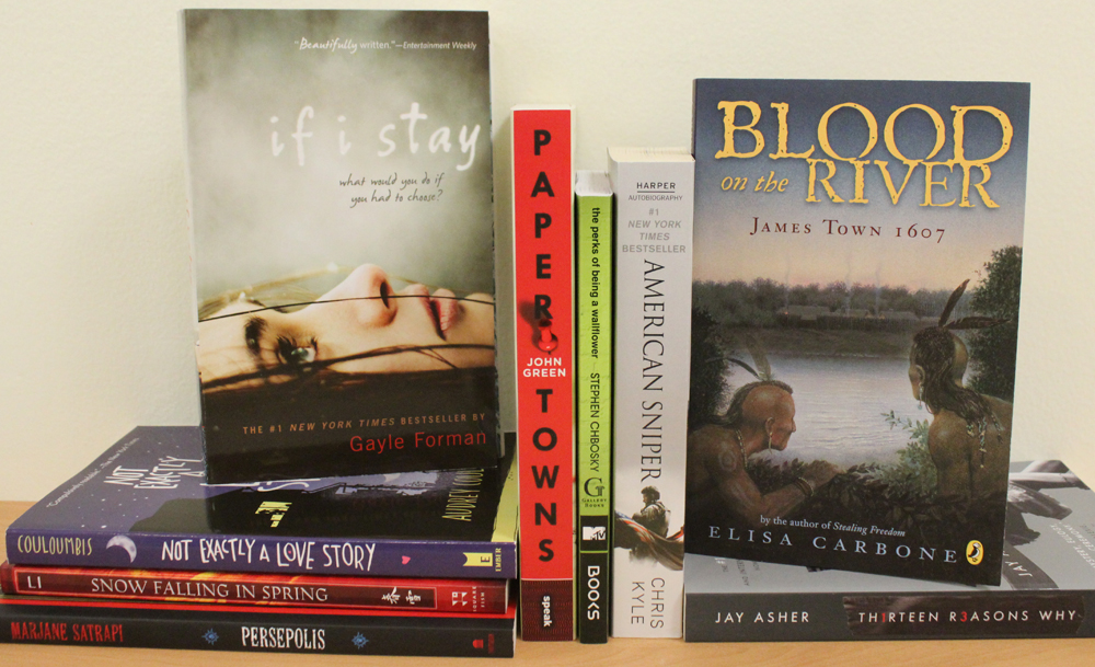 Lower High School Differentiated Book Bundle