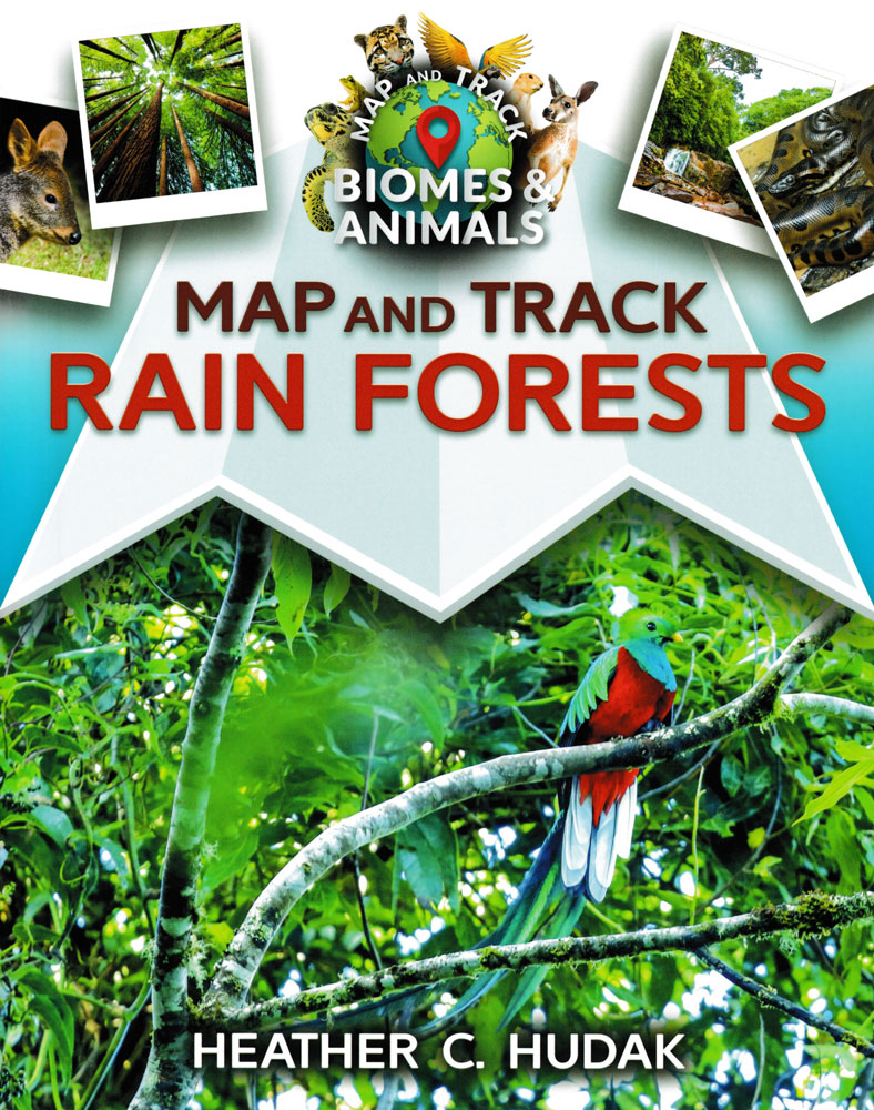 Map and Track Rainforests Book