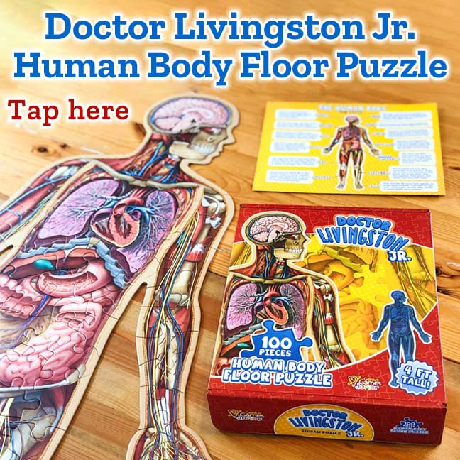 Dr. Livingston Jr. Human Body Floor Puzzle