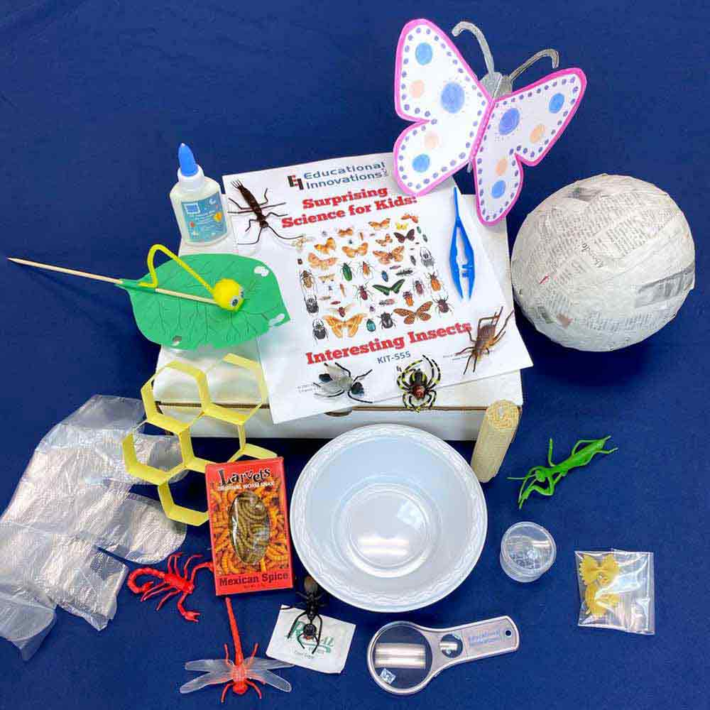 Surprising Science for Kids: Interesting Insects