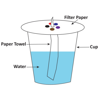Chromatography Filter Paper