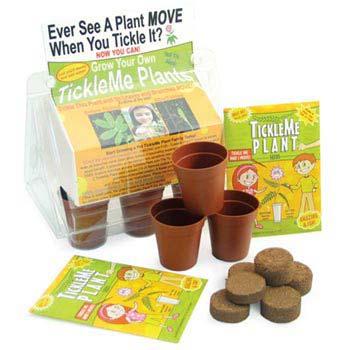 TickleMe Plant Greenhouse Kit