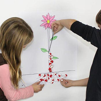 Magnetic Water Molecule Kit
