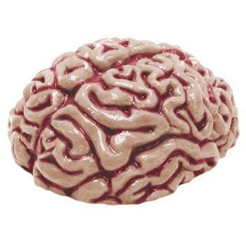 Brain Mold - Gelatin