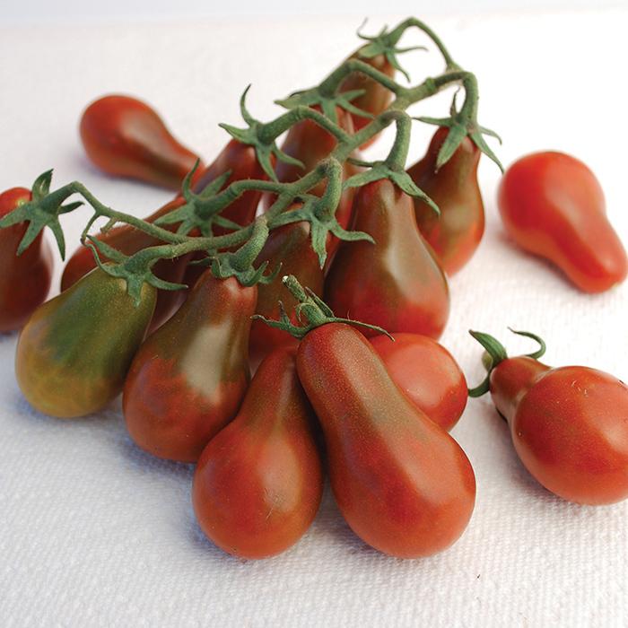 Chocolate Pear Tomato