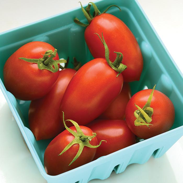 Heirloom Marriage Marzinera Hybrid Tomato